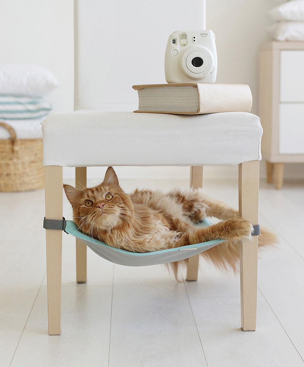 Arredamento per cani tiragraffi scalette e nascondigli for Arredamento per gatti